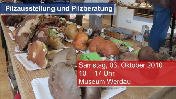 Pilzausstellung 2020